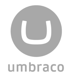 Searching for Umbraco development services?